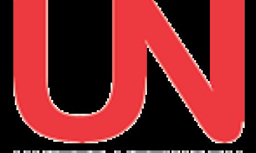 20 ottobre: Completamento presentazione progetto IMUN