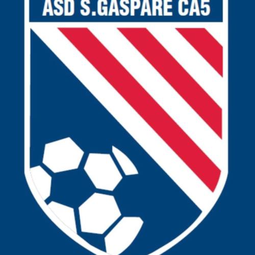 Alternanza S/L – Classi IV, V – S.Gaspare CA5 – Webmaster e admin pagina Facebook