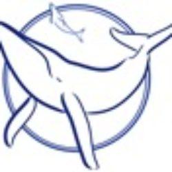 """ASL – programma attività """"Tutti fanno la differenza"""" (Sea Shepherd)"""