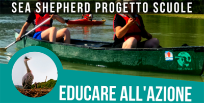 Sea Shepherd - Educare all'azione