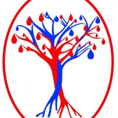 Donazione del sangue – EMA Roma – Mercoledì 19 febbraio